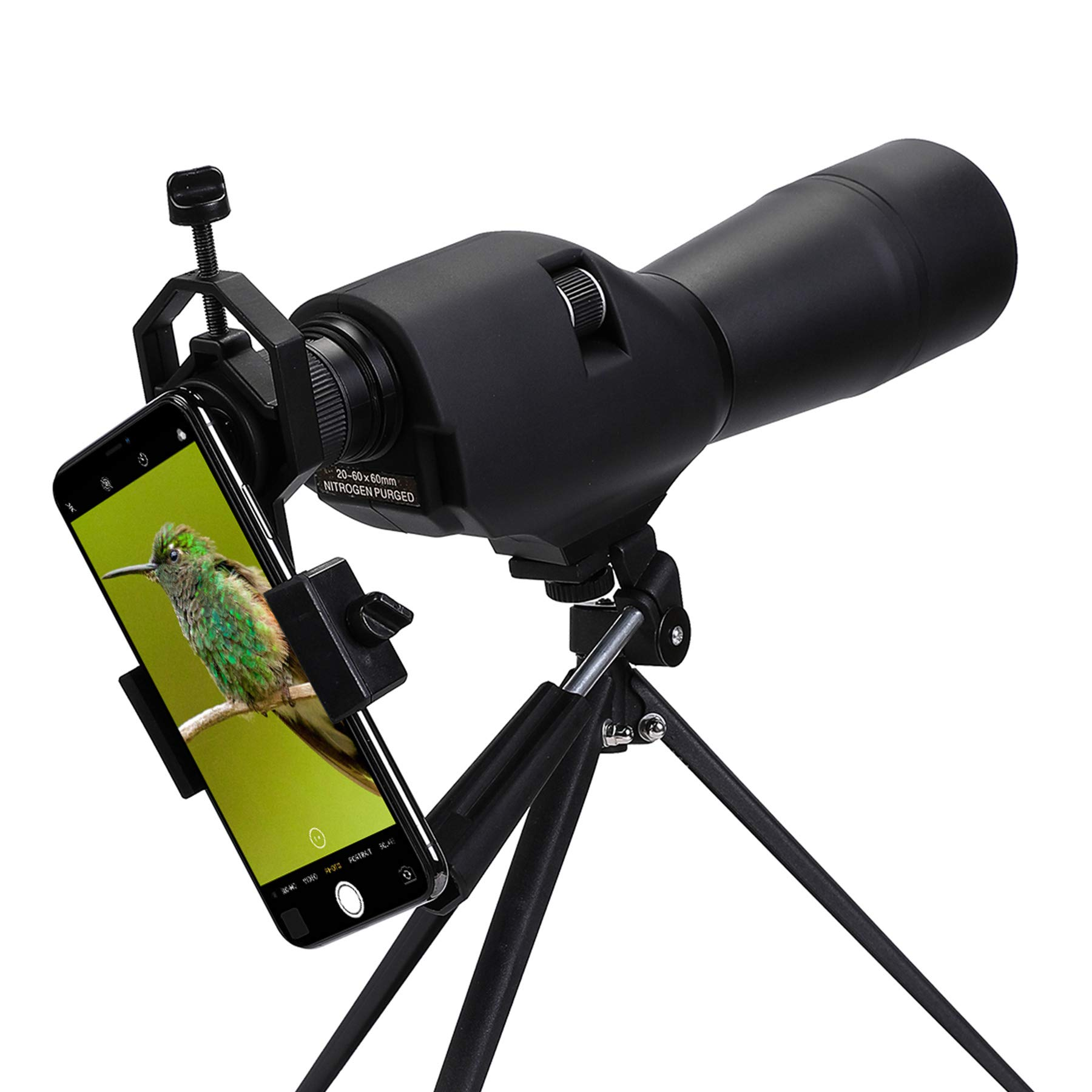 Pinty 20-60x60 Straight Spotting Scope with Tripod, Optics Zoom 36-19m/1000m for Target Shooting Bird Watching Hunting W/Phone Holder, Waterproof