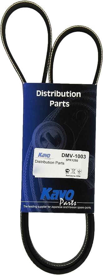 Kavo Parts Dmv 1003 Keilrippenriem Auto