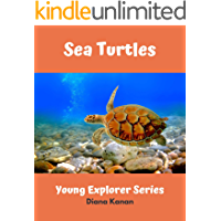 Sea Turtles: Young Explorer Series book cover