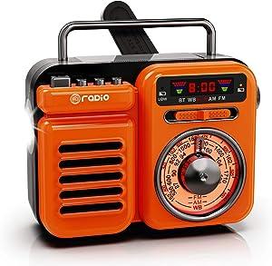 Raddy RW3 Retro Bluetooth Speaker, Portable Power Bank, Battery Operated, AM/FM/NOAA, Emergency Hand Crank Radio Solar Powered, Home Party