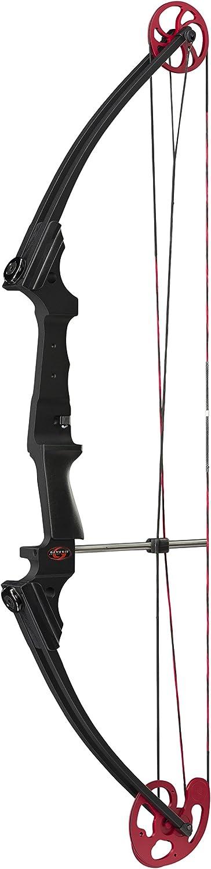 Genesis Original Bow Great Starter Bow for Beginner Archers