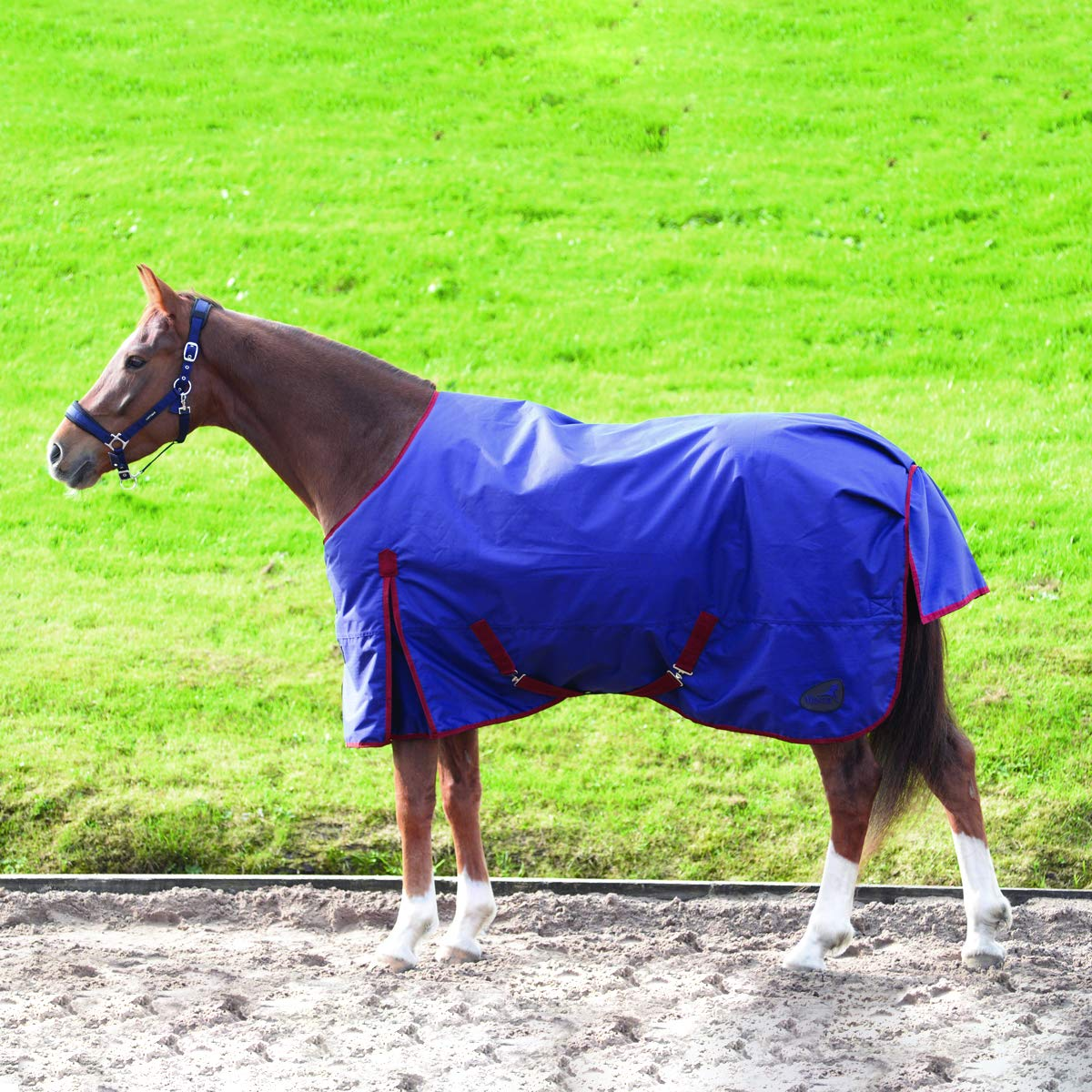 bluee 6 ft 6-Inch bluee 6 ft 6-Inch Masta basics standard neck turnout rug, blanket, 200g
