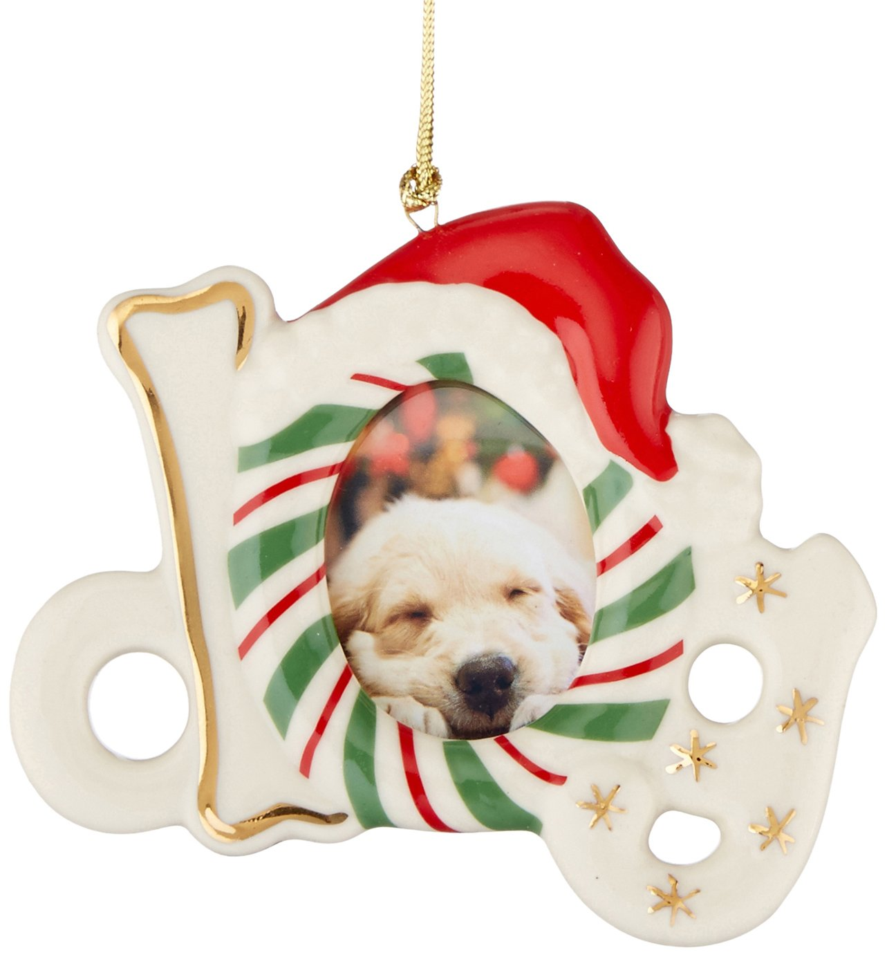 Amazon.com: Lenox Dog Frame Ornament/Magnet: Home & Kitchen