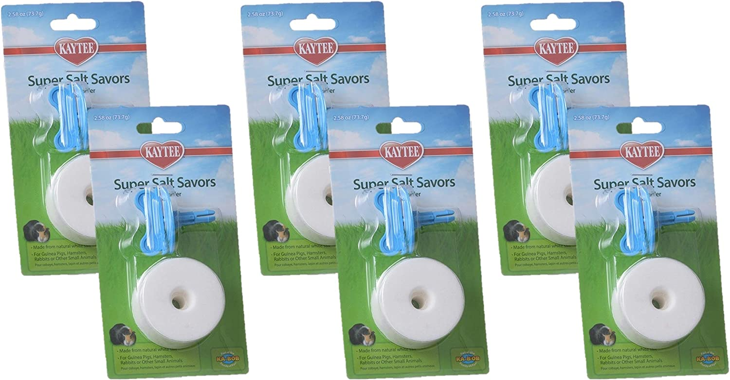 Kaytee 6 Pack of Super Salt Savor, 2 Inch, for Small Pets