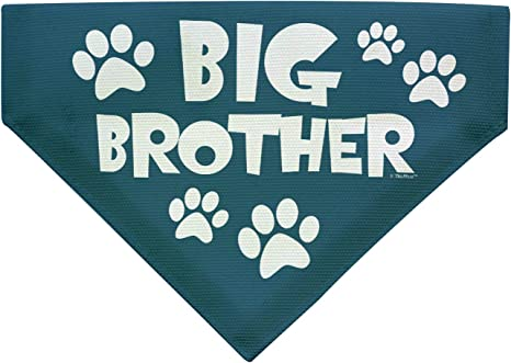 Big Brother Pet Photo Prop Pregnancy Big Brother Dog Dog Pregnancy Bandana Dog Pregnancy Announcement Big Brother Dog Shirt