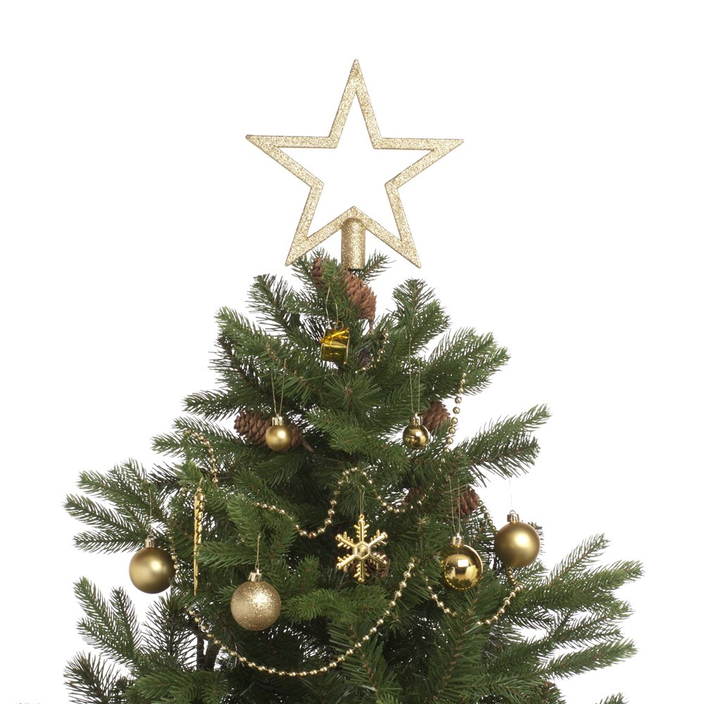 Amazon.com: Festive 74 Piece Assorted Christmas Ornament Set, Gold ...