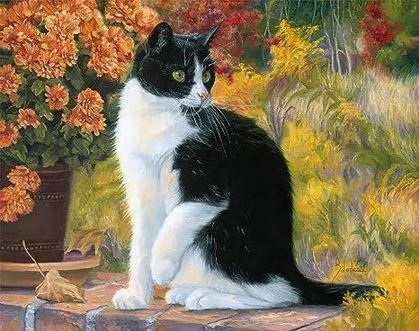Wincy tienda UE Cute animales negro y blanco gato DIY Digital de pintura al óleo sobre