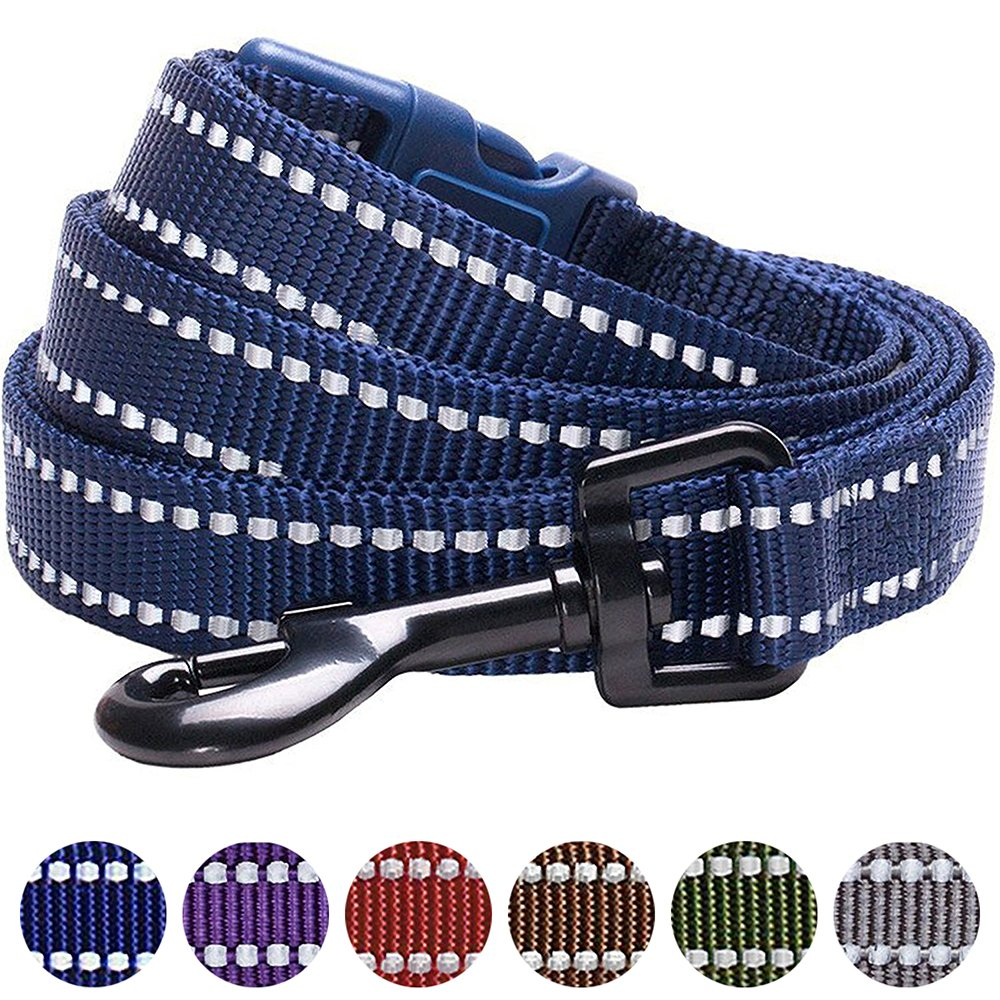 Blueberry Pet 6 Colors Durable 3M Reflective Classic Dog Leash 5 ft x 3/4, Midnight Navy, Medium, Leashes for Dogs