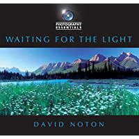 Waiting for the Light (Photography Essentials) book cover