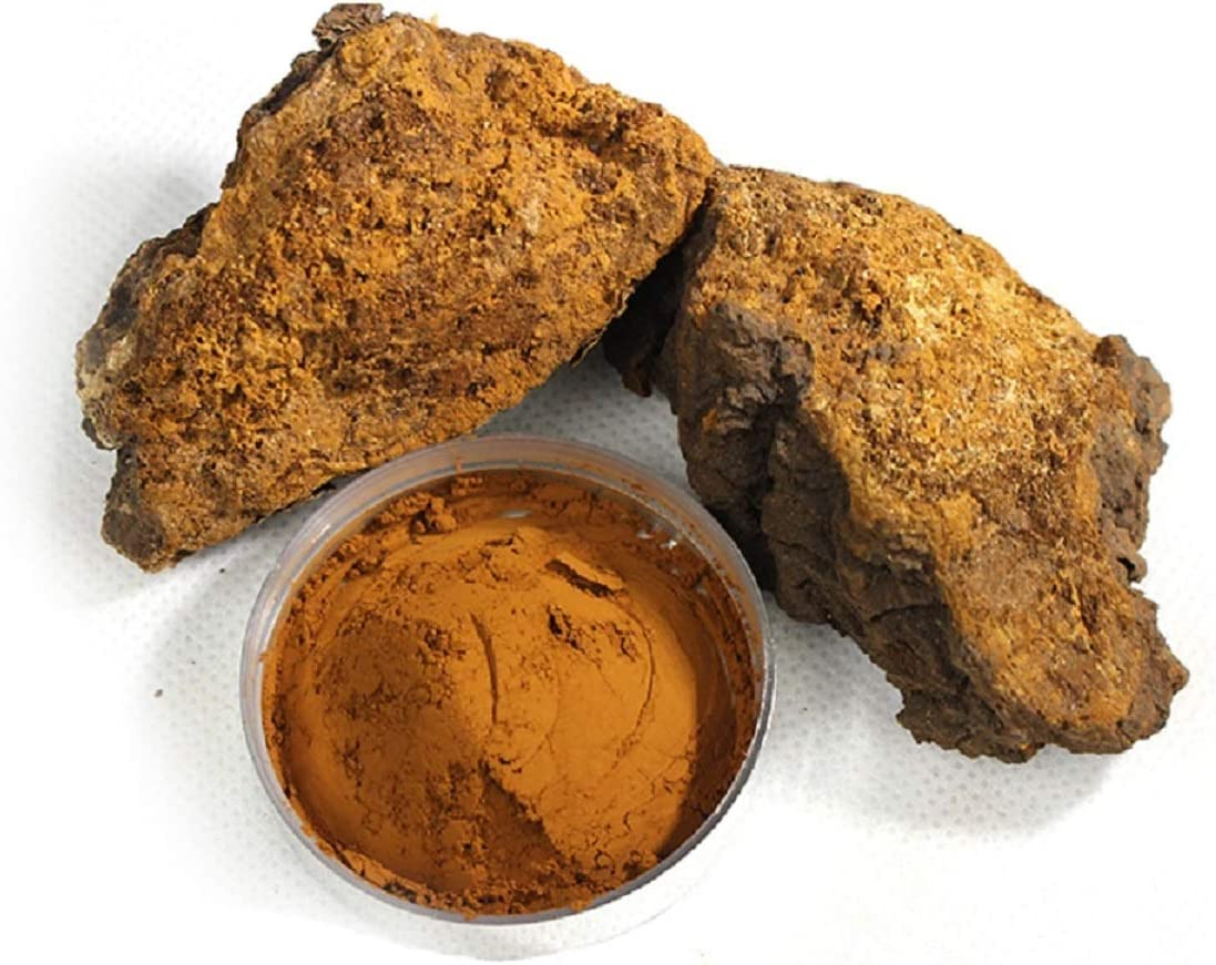 Organic Chaga Mushroom Powder Harvested from Live Birch Tree