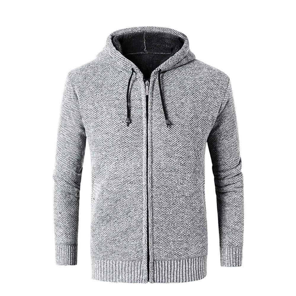 PASATO Men's Classic Casual Autumn Winter Zipper Fleece Hoodie Outwear Tops Sweater Blouse Coat Pure Color Clothes(Gray, 3XL)
