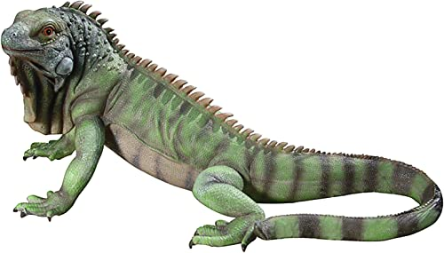 Design Toscano QL56991 Iggy The Iguana Garden Statue