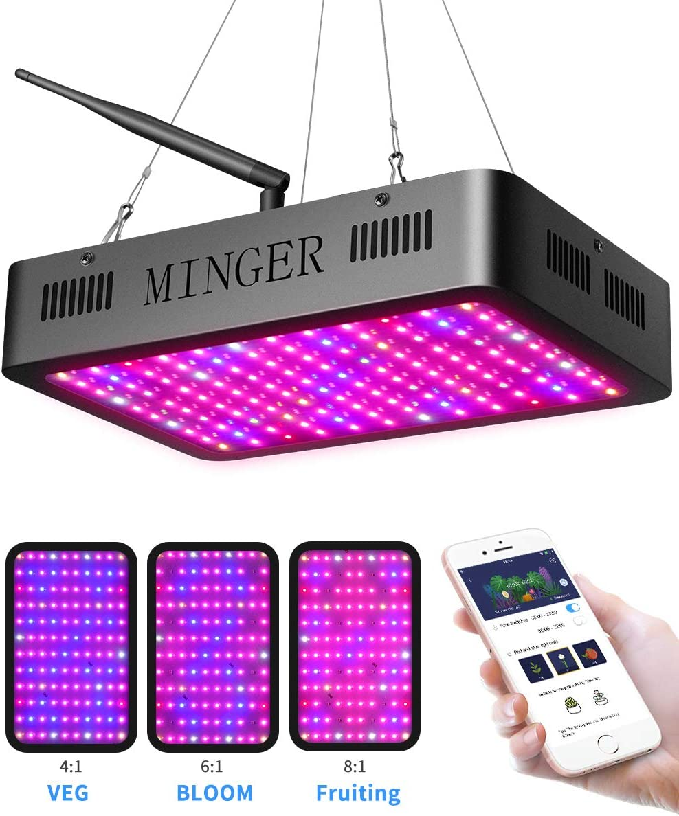 600W LED Grow Lights, MINGER Full Spectrum Veg Bloom Fruiting Modes Plant Lamps with APP Timer Control for Indoor Plants Seedling Growing Blooming Fruiting