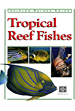 Tropical Reef Fishes: Periplus Nature Guide (Periplus Tropical Nature Guide)