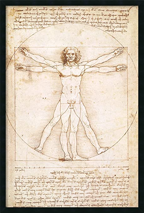 Amazon Com Framed Wall Art Print Home Wall Decor Art Prints Proportions Of The Human Figure Vitruvian Man By Leonardo Da Vinci Modern Decor Framed Art Print 25 25 X 37 25