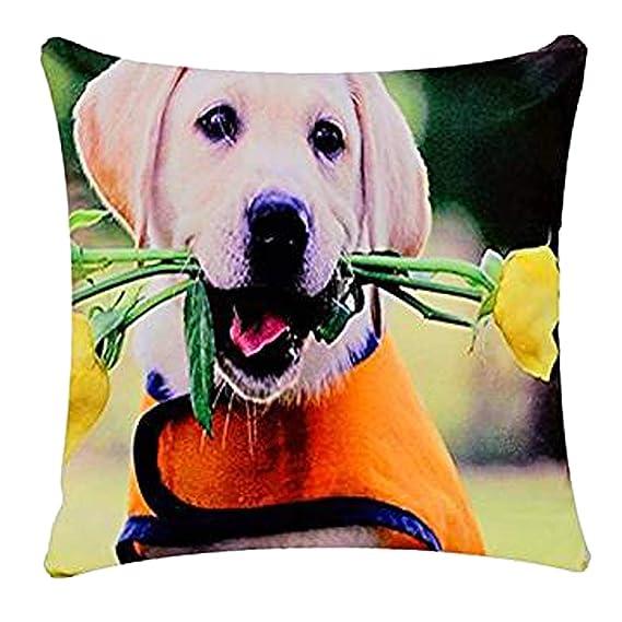 Lindo perro de perrito de Labrador con Rosas Perro Print Cojín Funda de almohada para Sofá/Cama / Sofá, Chenille Cotton, 17 x 17 pulgadas: Amazon.es: Ropa y ...
