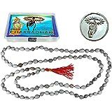CHAKRADHARITM Unisex 108+1 Beads Vijayanti Mala for Japa