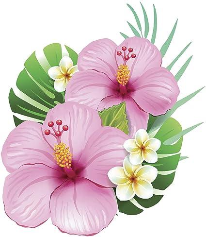 Amazoncom Beautiful Hawaiian Hibiscus Floral Arrangements Cartoon