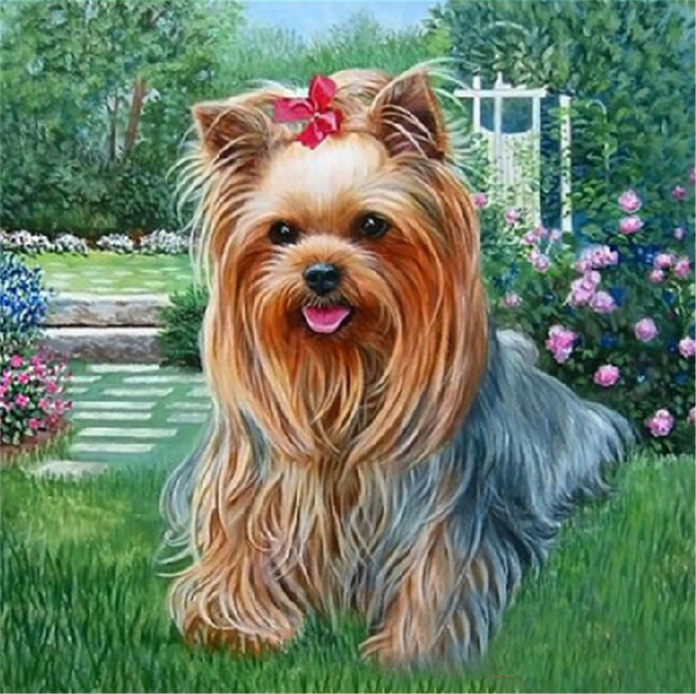 YEESAM ART New 5D Diamond Painting Kit - Yorkshire Terrier - DIY Crystals Diamond Rhinestone Painting Pasted Paint by Num