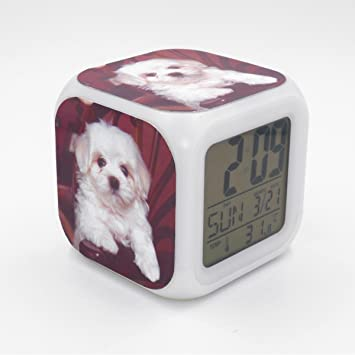 Amazon Com Boyan Led Alarm Clock Tenerife Dog Puppy Creative Desk