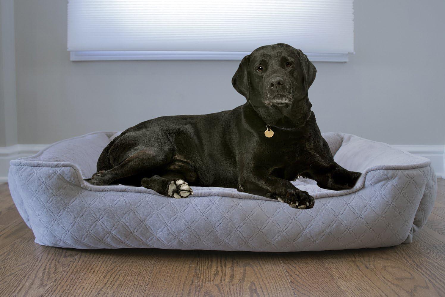 Arlee Lounger and Cuddler Pet Bed