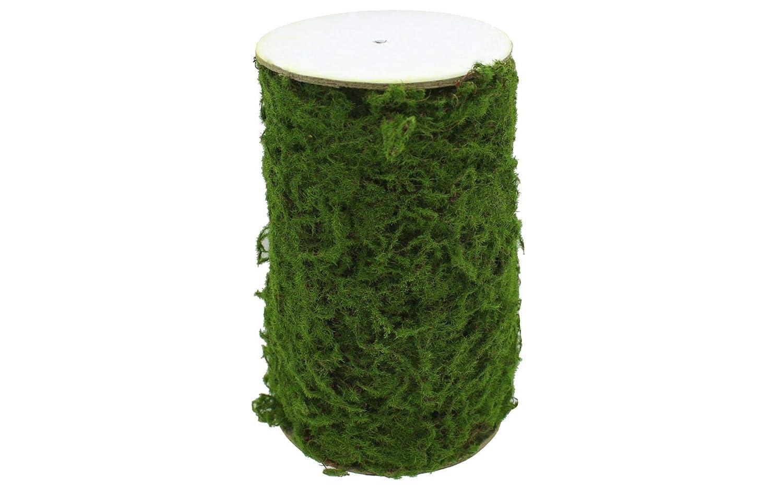 Darice 30052117 Moss Roll 6x30