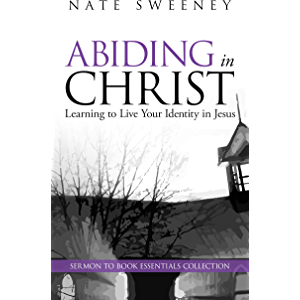 Abiding in Christ: Learning to Live Your Identity in Jesus