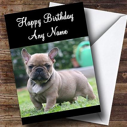 Amazon french bulldog dog personalized birthday greetings card french bulldog dog personalized birthday greetings card m4hsunfo