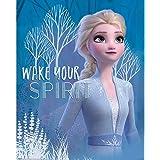 FROZEN 2 アナと雪の女王 - Wake Your Spirit Elsa/ミニ/ポスター 【公式/オフィシャル】
