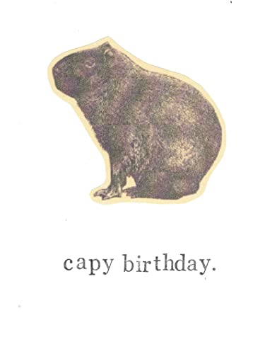 Amazon Capy Birthday Capybara Birthday Card Funny Animals