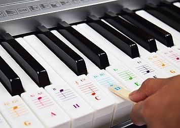 Teclados de piano para teclados 49/61/76/88, transparente y extraíble, incluye E-Book de piano: Amazon.es: Instrumentos musicales