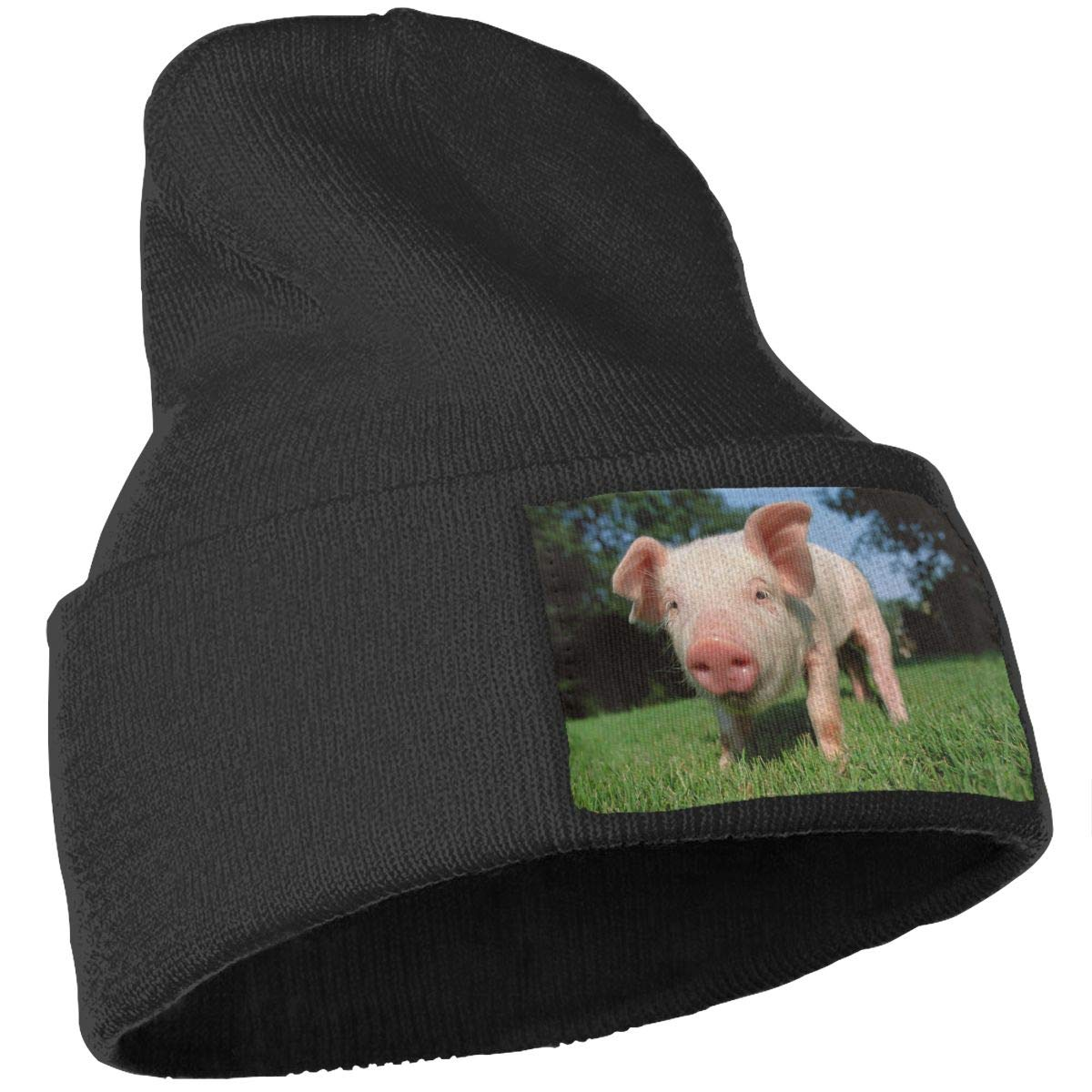 Cute Pig Sun Unisex Fashion Knitted Hat Luxury Hip-Hop Cap