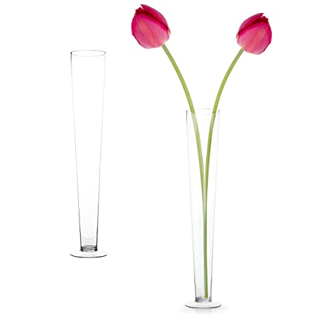 Amazon 24 Inch Clear Glass Trumpet Pilsner Flute Vases