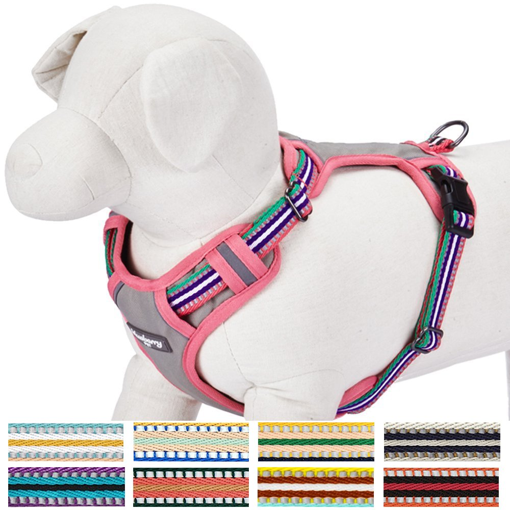Blueberry Pet Soft & Comfortable 3M Reflective Multi-colored Stripe Mesh Padded Dog Harness