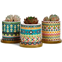 Greenaholics Succulent Plant Pots - 3 Inch Cylinder Bohemian Ceramic Planter for Cactus, Succulent Planting, with Drainage Hole, Bamboo Trays, Set of 3