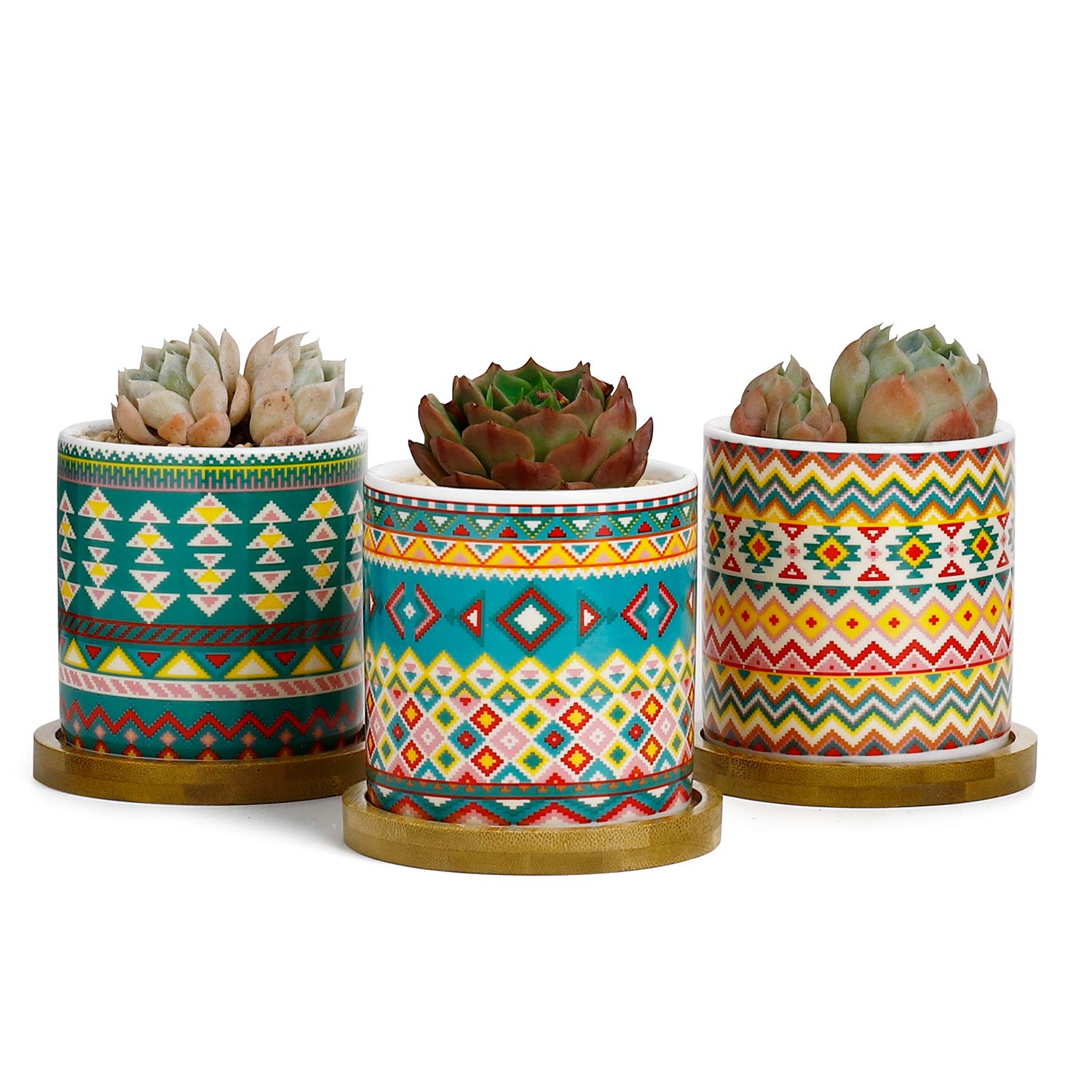 Greenaholics Succulent Plant Pots – 3 Inch Cylinder Bohemian Ceramic Planter for Cactus, Succulent Planting, with Drainage Hole, Bamboo Trays, Set of 3