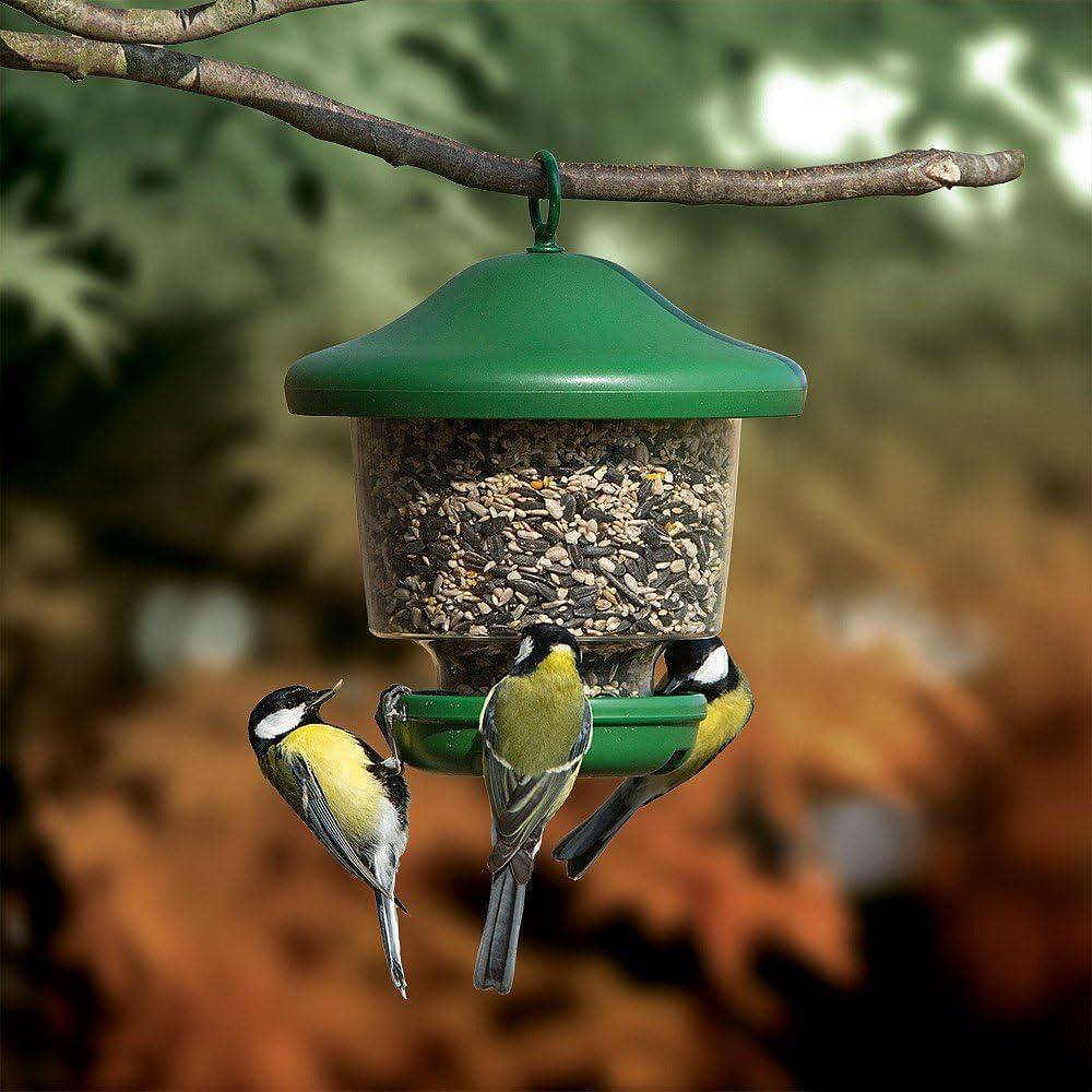 Comedero para pájaros de jardín con Farol Colgante, diseño de My Favourites, fácil de llenar, Resistente a la Lluvia, Color Verde