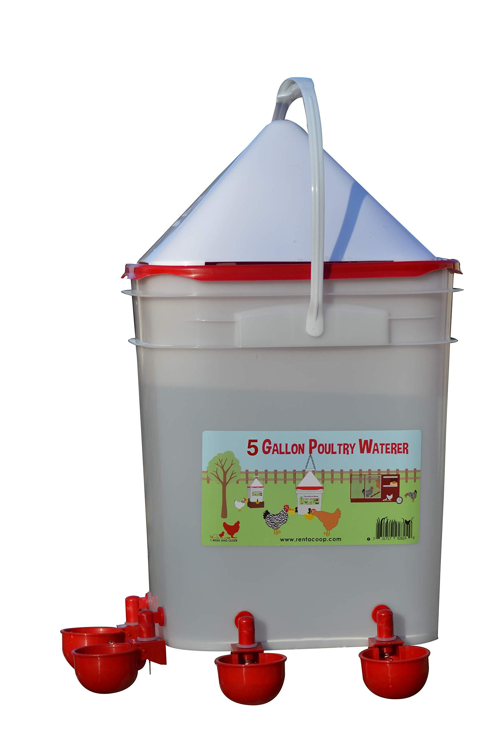 RentACoop 5 Gallon/ 4 Automatic Chicken Nipple Water Cup Chicken Waterer (Corner Placement) by RentACoop