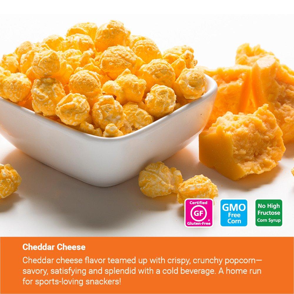 Popcornopolis Gourmet Popcorn 2 Gallon Tin - Classic by Popcornopolis (Image #6)
