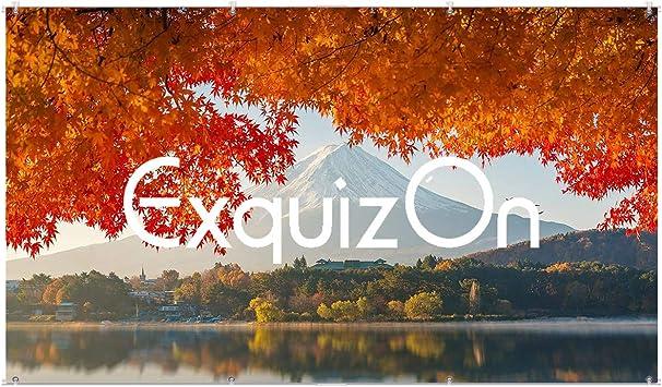 """ExquizOn Pantalla para Proyector Colgante 120"""", 160° Ángulo de ..."""