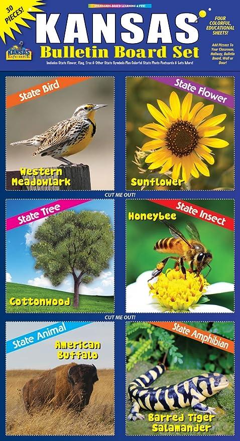 Gallopade Publishing Group Kansas Bulletin Board Set 9780635075161