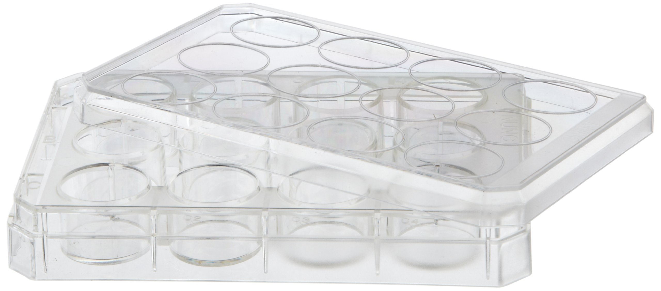 Nunc Microdish 12 Well Hydrocell Surface (Case of 6)