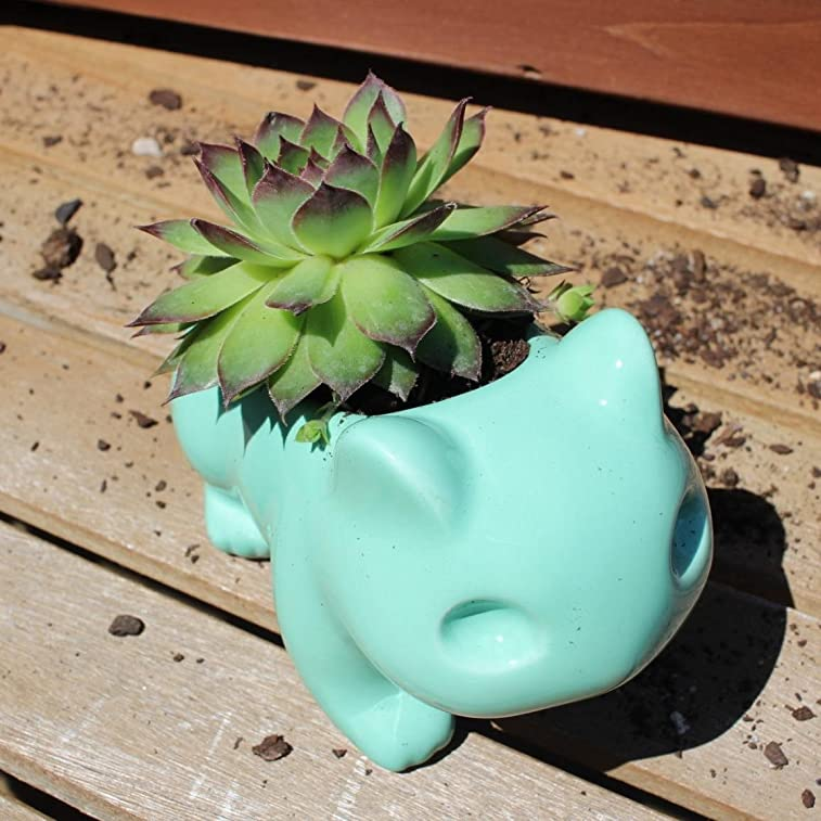 Pokemon Bulbasaur Flowerpot