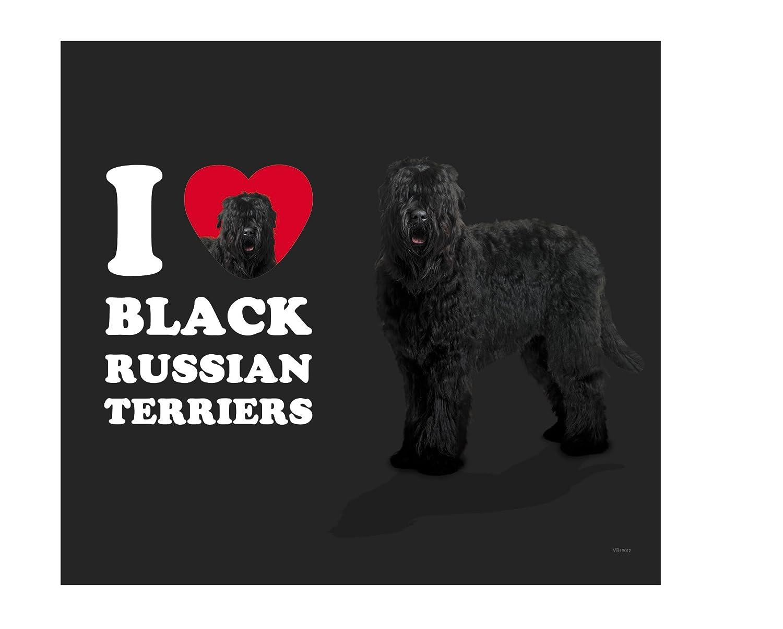 18-Ounce Tree Free Tree-Free Greetings VB49012 I Heart Black Russian Terriers Artful Traveler Stainless Water Bottle