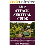EMP Attack Survival Guide : A Step-By-Step Beginner's Guide On How To Prepare For And Survive An Electromagnetic Pulse Attack