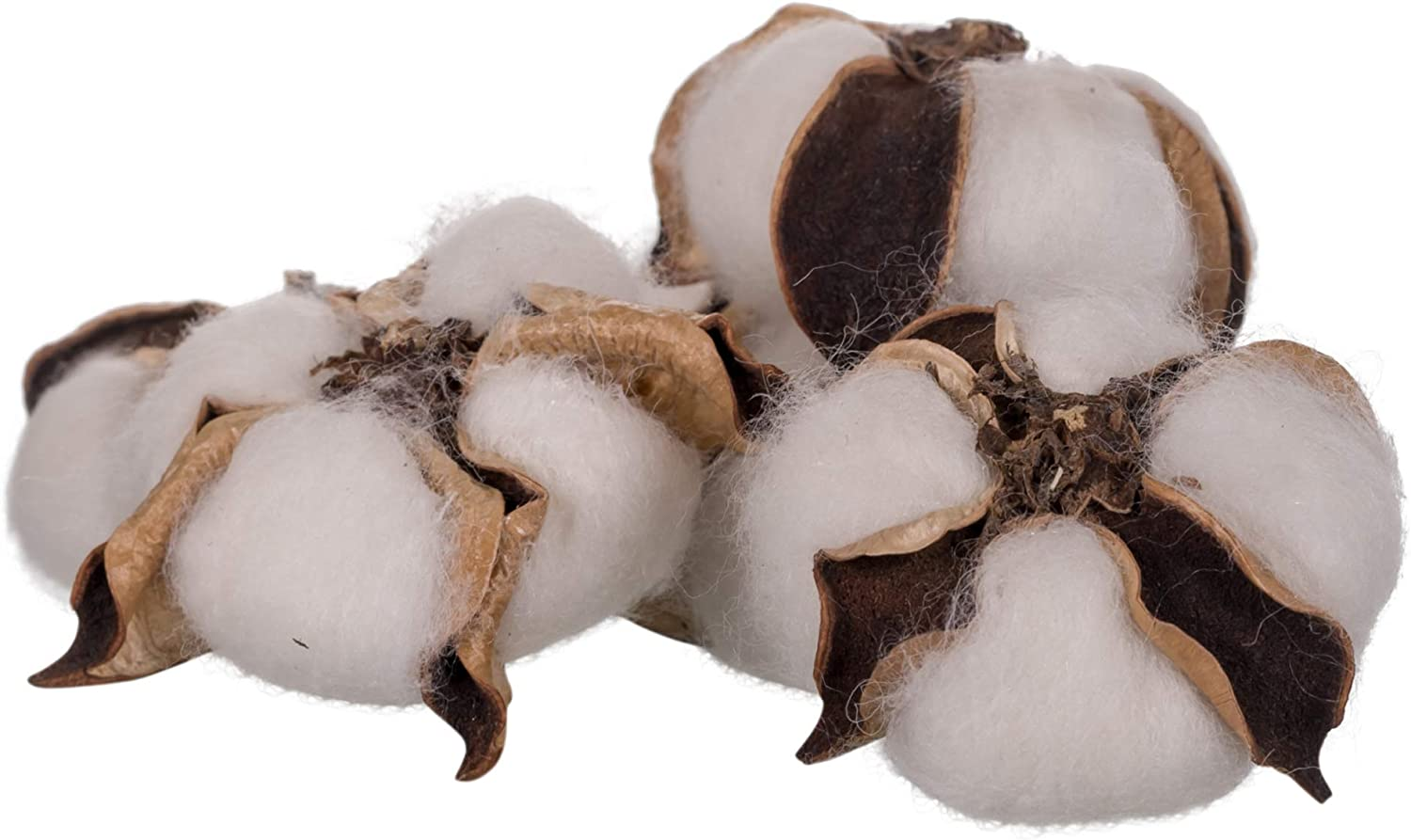 The Country House Collection Cotton Bolls Bunch (10 pods)