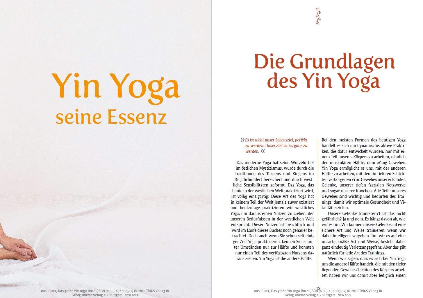 Das Grosse Yin Yoga Buch Clark Bernie Meyer Nicole Amazon De Bucher