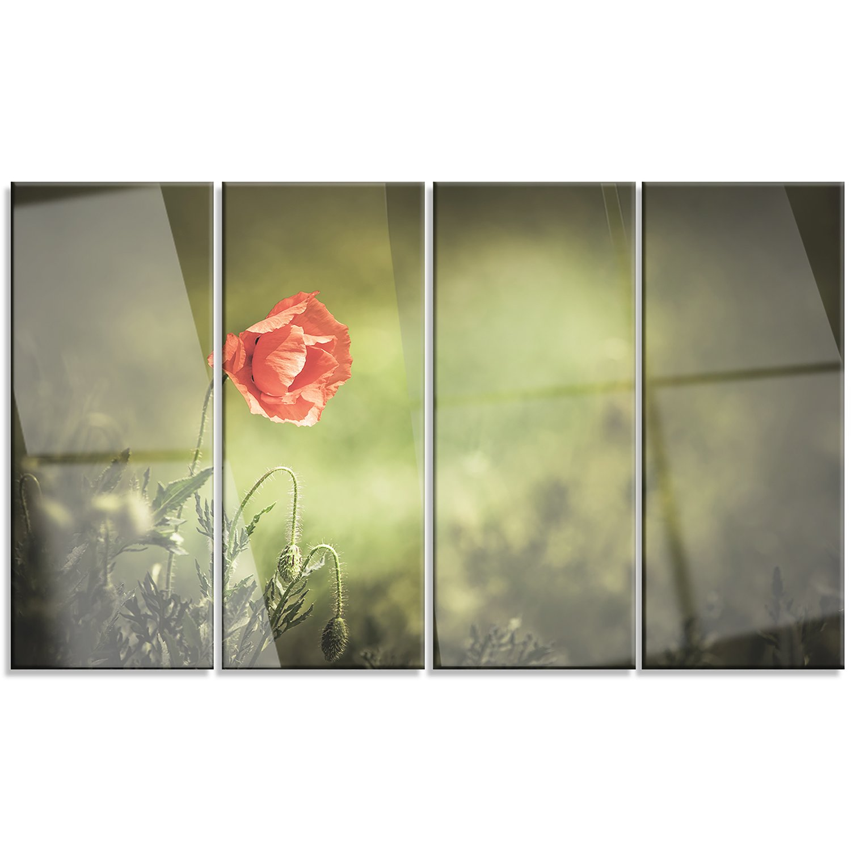 Amazon.com: Design Art PT12983-60-28 Red Wild Poppy Flower on Green ...