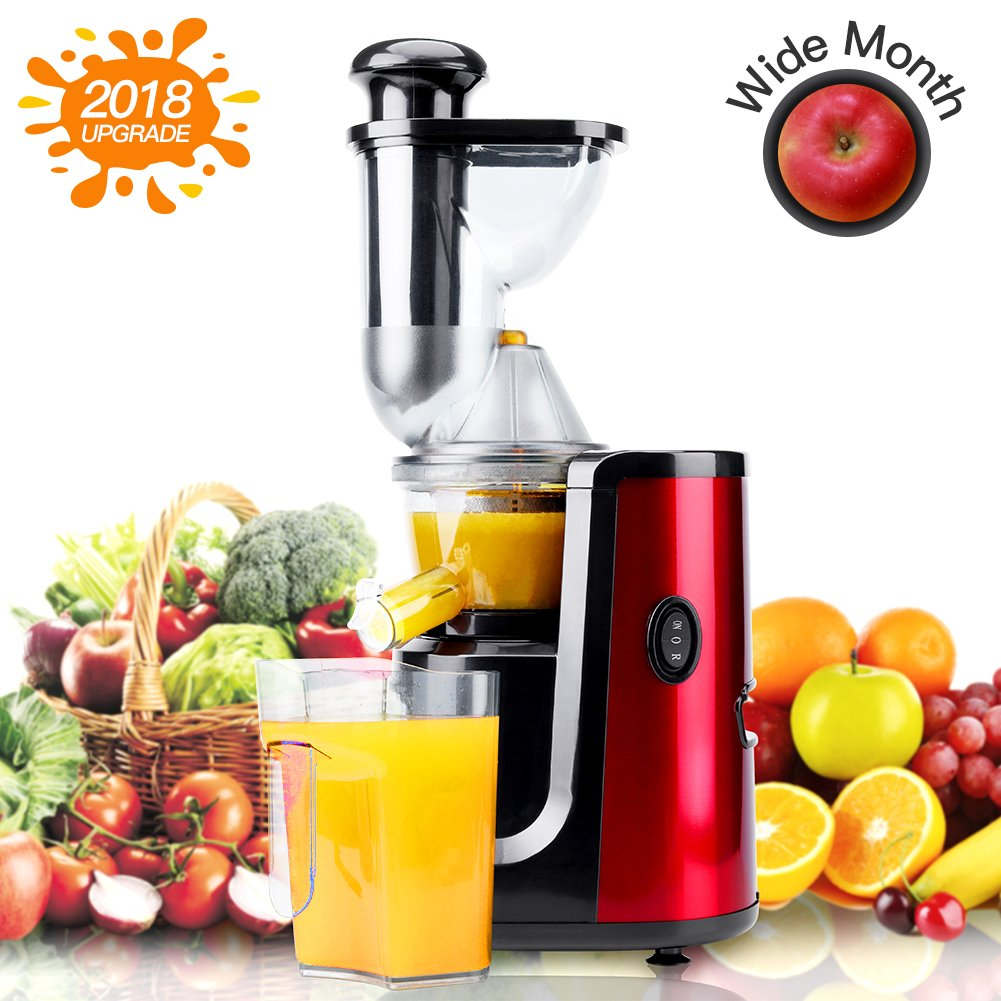 Juicer Hornbill Slow Masticating Juicer Cold Press Juicer Machine,Wide Mouth Whole Masticating Juicer with Juice Jug and Brush, Easy to Clean, Higher Nutrient Fruit and Vegetable juice