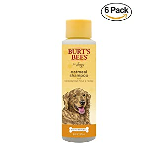 Burt's Bees All Natural Oatmeal Shampoo for Dogs | Made with Colloidal Oat Flour and Honey | Moisturizing Oatmeal Dog Shampoo, 16 Ounces, Pack of 6